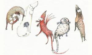 Gabriela Rubio Ilustración Faycán
