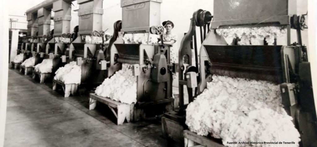 industria algodonera en canarias
