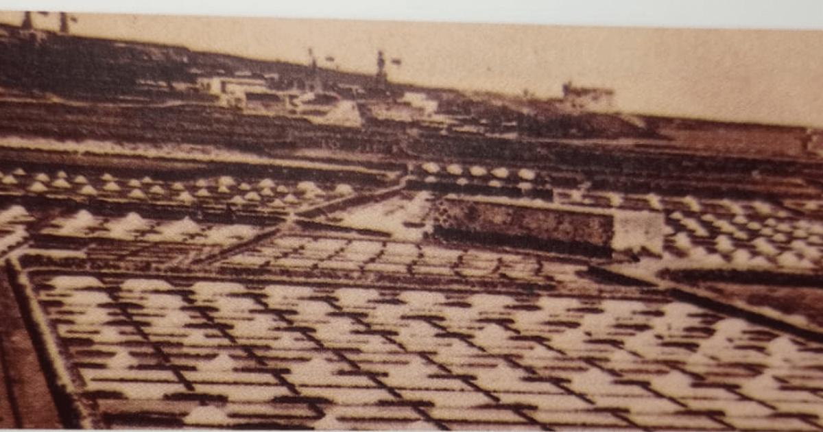 salinas en la economía canaria